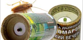 Insektizide Rauchbomben töten Kakerlaken in der Wohnung