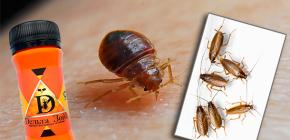 Heilmittel für Wanzen und Kakerlaken Delta Zone: Beschreibung und Testberichte