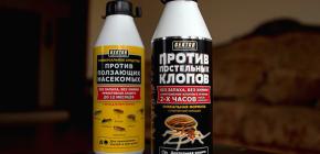 Insektizid Hector von Bettwanzen und anderen Insekten