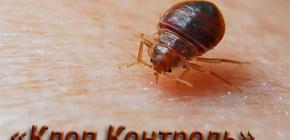 Schädlingsbekämpfung Bedbug Kontrolle und Funktionen seiner Arbeit