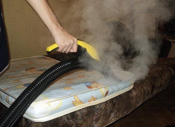 Das Foto zeigt ein Beispiel der Verarbeitung der Matratze mit heißem Dampf, um Wanzen und ihre Eier zu zerstören.