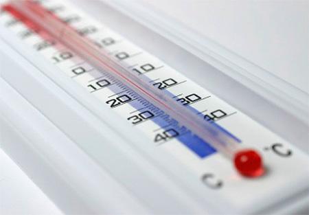 Temperaturbehandlung von Wanzen: Einfrieren oder Wärmebehandlung (oder Dampf)