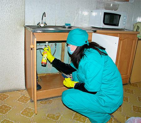 Sprays sollten an Stellen gesprüht werden, an denen sich Insekten ansammeln können.