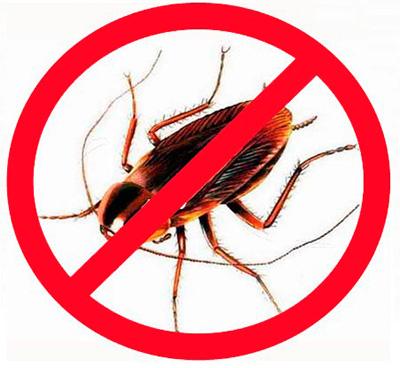 Die Verwendung von modernen Insektiziden