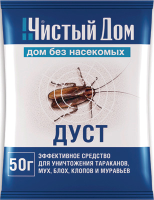Insekt sauberes reines Haus
