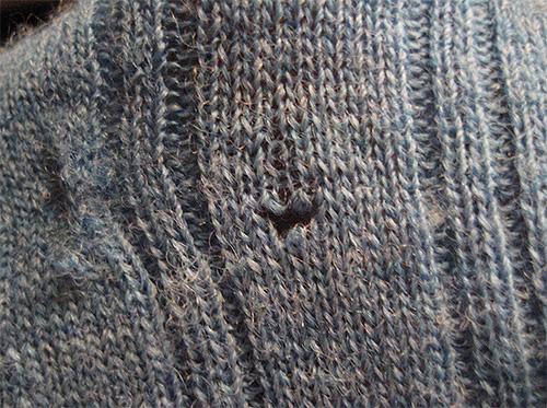 Dieses Loch im Pullover hinterließ die Larven der Kleidermotte