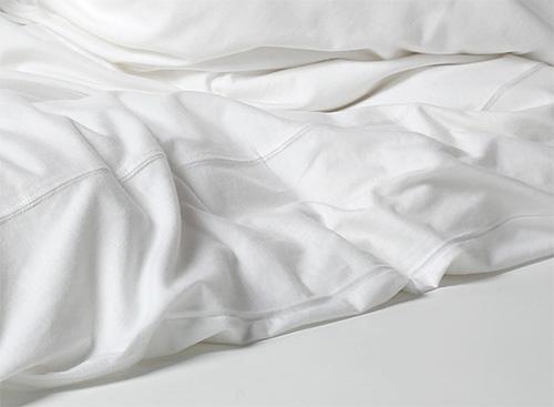 Es ist wichtig sich daran zu erinnern, dass man neben den Flöhen im Bett auch andere Parasiten finden kann ...