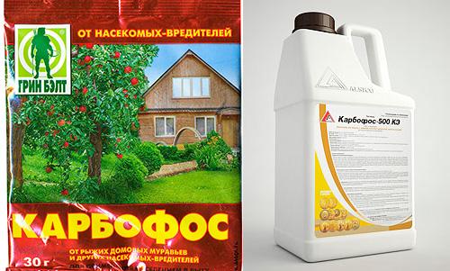 Karbofos wird sowohl in pulverisierter als auch flüssiger Form verkauft.
