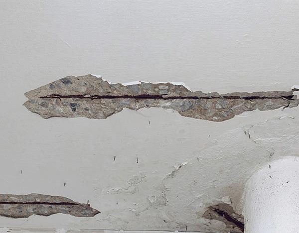 Risse in der Decke, an Wänden oder im Boden können auch der Weg sein, durch den Schädlinge die Wohnung betreten.