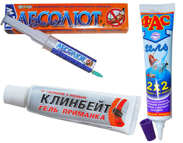 Gel verwendet im Kampf gegen Kakerlaken und Ameisen im Haus, ist es auch wirksam gegen Asseln.
