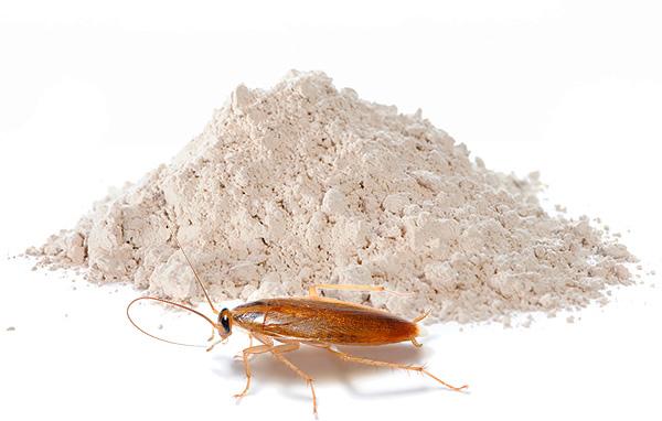 Insektizide Puder bleiben weiterhin eines der beliebtesten Mittel der Kakerlaken heute - wir werden weiterhin über solche Vorbereitungen reden und mehr reden ...