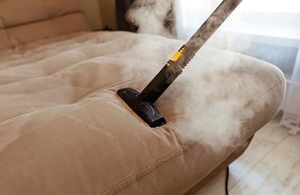 Heißer Dampf aus einem Dampfreiniger kann das Gewebe bis zu einer beträchtlichen Tiefe aufwärmen, wodurch Zecken und ihre Eier effektiv zerstört werden.